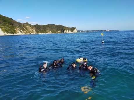 近くの海で潜ろう!