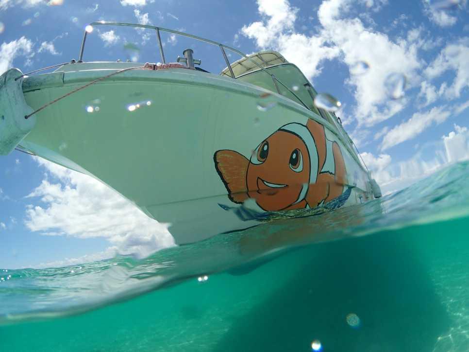 石垣島ボートダイビング